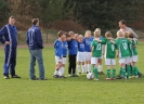 Pokalspiel F-Jugend_33